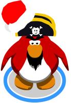 pinguino rockhopper